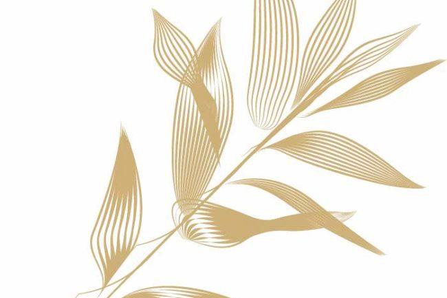 Branche-logo-Domaine-Myrtus